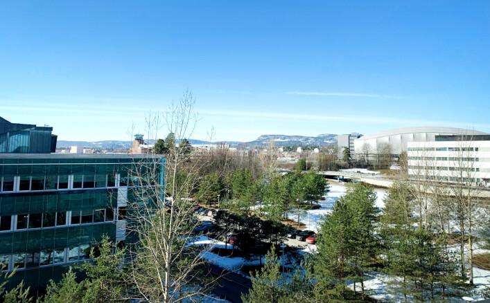 Utsikten fra kontorene til Hanne Mathisen hos Telenor på Fornebu. 📸: Privat