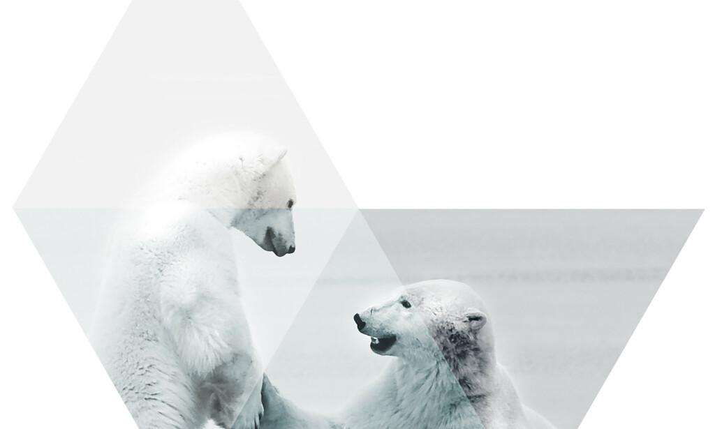 image: Asolvi seeks UX designer