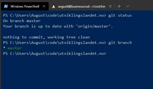 Windows Terminal i Preview-utgave. 📸: August Lilleaas