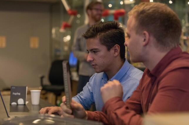 Alt fra frontend til backend og alt i mellom - Bekks utviklere tror du bør mestre det meste for å være klar for 2020. 📸: Bekk