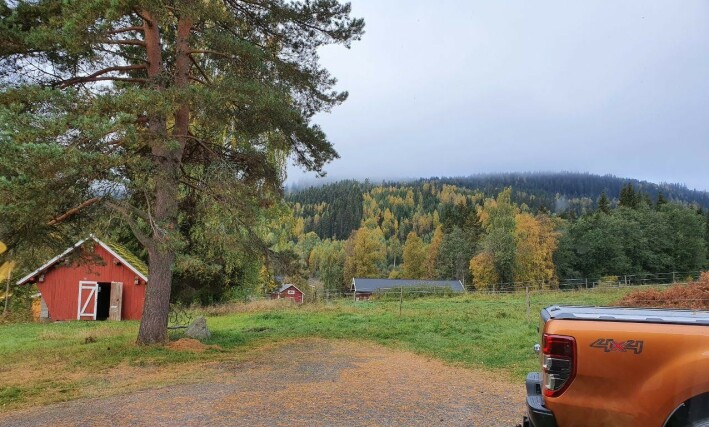 Nydelig utsikt fra småbruket på Flisa. 📸: Privat