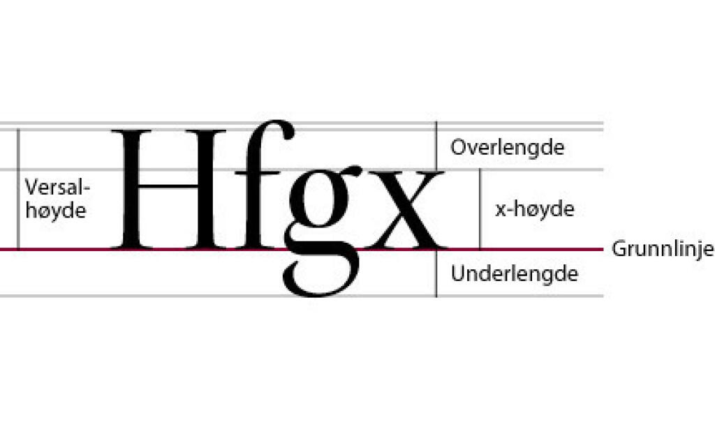 Kristian Grønevet tror x-høyden på Twitters font gjør at brukere reagerer.